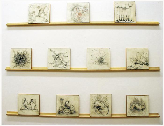 Serie Dibujos Abrasivos de Pilar Barrios