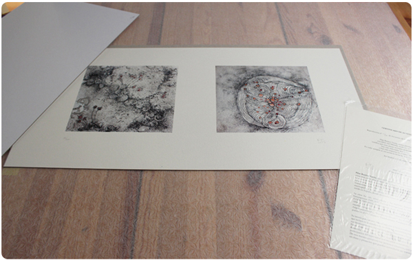 Obra grafica de PilarBarrios para la FGUCM carpeta